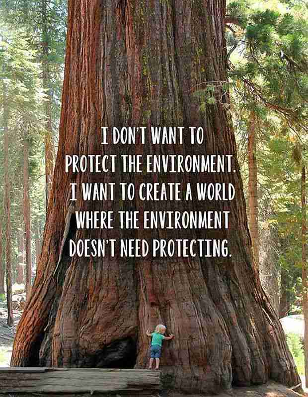 Earth Day Quotes  on Environment