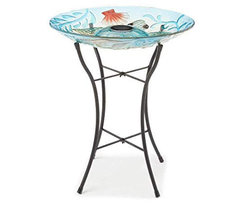 Mushroom elagant turtle bird bath for backyard