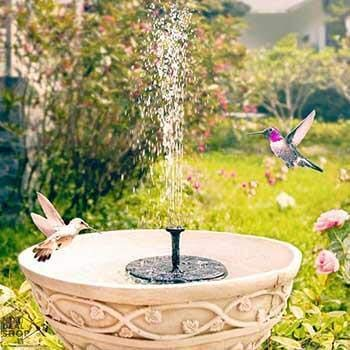 Next deal shop bird bath run with solar power